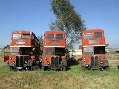 bus - Alan Woodhart - Picasa Web Albums