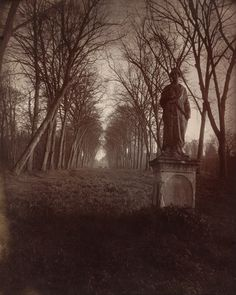Another one of Atget's photos, this one at the Parc de Sceaux.