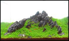 Shaman's Mountain by Antonio Nikolic - Aquascape Awards