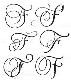set of art calligraphy letter F with flourish of vintage decorative. - set of art calligraphy letter F with flourish of vintage decorative. – Millions of Creative Stock Photos, Vectors, Videos and Music Files For Your Inspiration and Projects. Flourish Calligraphy, Calligraphy Drawing, Copperplate Calligraphy, Calligraphy Handwriting, Calligraphy Letters, Penmanship, Hand Lettering Alphabet, Script Lettering, Lettering Styles