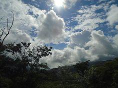Nature Pictures, Costa, Birds, Clouds, Flowers, Outdoor, Outdoors, Bird, Outdoor Games