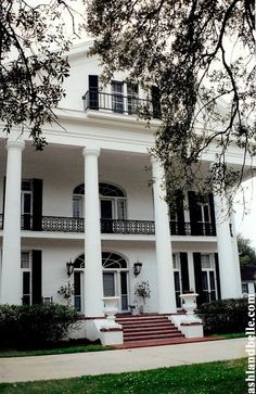 Southern Plantation Homes, Southern Mansions, Southern Homes, Southern Charm, Southern Nights, Plantation Houses, Southern Style, Greek Revival Architecture, Southern Architecture