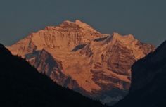 Alpine glow on the Jungfrau