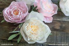 Нежные цветы из крепбумаги