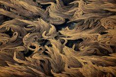 Algues Morbihan Yann-Arthus Bertrand