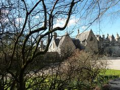 Stunning photos of our walk from Tweedbank train station to the beautiful town of Selkirk, along the Borders Abbeys Way. With panoramic views, ponies, horses and plenty of tiny lambs. Scotland Culture, Train Station, Bike, Horses, Beautiful, Bicycle, Bicycles, Horse