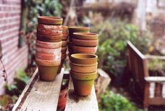 little clay pots
