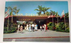Vtg 1950s POSTCARD San Diego Zoo entrance @ Balboa Park Unposted