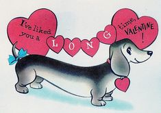 Vntg VALENTINE Card DACHSHUND WEINER Dog Doxie I'VE LIKED YOU A LONG TIME UNused