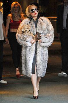 Lady Gaga Once Said She Hated Fur.Is Now Wearing Lots Of Fur.And PETA Is P.: Dressed (yes, peta. Let the hate flow thru you. Lady Gaga, Fur Fashion, Fashion Beauty, Winter Fashion, Female Fashion, Street Fashion, High Fashion, Peta, Kim Kardashian