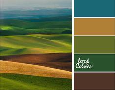 Коричневый, зеленый, синий - сочетание