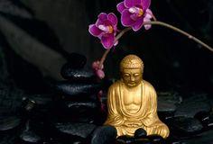 Nuestras sacerdotisas están entrenadas en las sabias artes de la milenaria tradición oriental del Tantra.