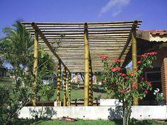 pergolado de bambu em sítio