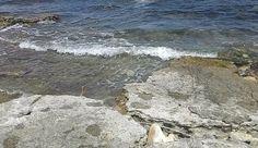 E' allerta anche quest'anno sul litorale tra Bari e Brindisi. L'Alga tossica Ostreopsis Ovata si trova soprattutto a Giovinazzo e Torre Canne