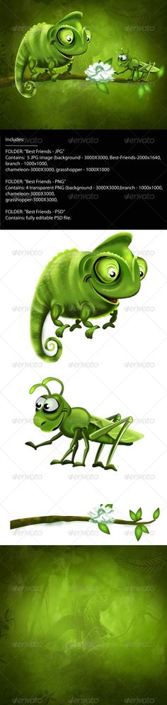 """Best Friends  #GraphicRiver        Includes: FOLDER : """"Best Friendgrasshopper – PNG """" Contains: 4 transparent PNG (background – 3000?3000,branch – 1000?1000, chameleon-3000?3000, grasshopper-3000?3000,   FOLDER : """"Best Friends – PSD """" Contains: fully editable PSD file.     Created: 27September12 GraphicsFilesIncluded: PhotoshopPSD #TransparentPNG #JPGImage HighResolution: No Layered: Yes MinimumAdobeCSVersion: CS Tags: branch"""