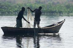 Fishermen, Lake Albert, traditional fishing methods are still popular in Uganda.