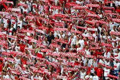 Polish fans show their support during the UEFA EURO 2012 group A match between Poland and Russia