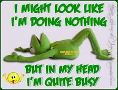 Kermit is busy. Kermit, Funny Frogs, Cute Frogs, Sad Love Quotes, Funny Quotes, Funny Memes, Qoutes, Humorous Sayings, Nice Sayings