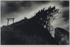 Torii on the Hill © Akiko Takizawa - Female Force from Japan: 12 Noteworthy New Photographers - Images courtesy of IBASHO Gallery Robert Frank, Japanese Photography, Art Photography, Vintage Photography, Royal College Of Art, Female Photographers, Natural Phenomena, Photojournalism, Fotografia
