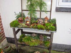 Et gammelt staldvindue, mos, gran, bark, kogler og gamle lanterner på et lille plantebord fra Jem & Fix Koglerne har min ældste s...