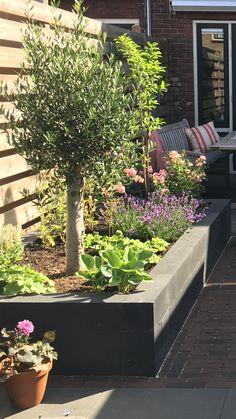 Pin van joke spoelman op garden in 2019 Small Backyard Gardens, Small Backyard Design, Backyard Garden Design, Garden Spaces, Small Gardens, Backyard Landscaping, Outdoor Gardens, Garden Tiles, Garden Paving