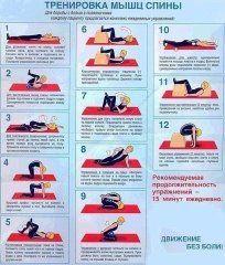 Комплекс упражнений для улучшения осанки и при боли в спине: