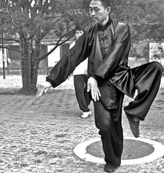 """Tai Chi, is a moving form of yoga and meditation combined. Tai Chi, originally a combat martial art, has evolved into a slow deliberate set of """"forms"""" which consist of a sequence of movements. Many of these movements are originally derived from the natural movements of animals and birds."""