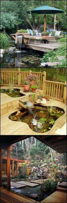 Koi moat Ideen Garten Pinterest Koi