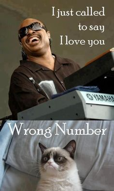 Grumpy cat - I just called to say I love   you.  Seriously can't stop laughing.  I dunno why I find these so hilarious, but   I do.