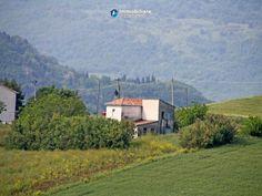 #Maison #rénover #terrain #d'oliviers #vendre #Gissi #Abruzzes #Italie
