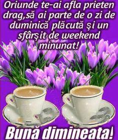 Imagini buni dimineata si o zi frumoasa pentru tine! - BunaDimineataImagini.ro Frases, Cat Breeds