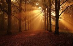 October sunlight