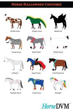 How Horses Celebrate Halloween - Infographic
