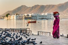 Pictures around the globe: India Udaipur Udaipur India, Backpacking South America, India Culture, India Asia, Incredible India, Amazing, Travel Deals, India Travel, Solo Travel