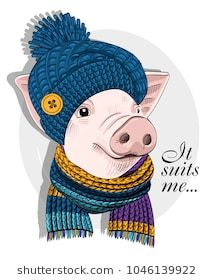 Vector pig with blue knitted hat and knitted scarf. Hand drawn illustration of dressed piggy. Knitted Christmas Jumpers, Christmas Knitting, Knitting Blogs, Baby Knitting, Pig Illustration, Illustration Pictures, Loom Flowers, Beginner Knit Scarf, Pig Images