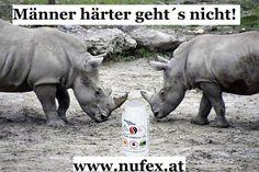 Superfoods, Hippopotamus, Animals, Science, Animais, Animales, Animaux, Super Foods, Animal