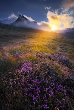 Good Morning from Scotland.Kiss of lightThe first rays of morning sun try to get through thick layer of clouds above one of the finest mountains in Scotland. The views from Stac Pollaidh over the. Nature Images, Nature Pictures, Cool Pictures, Beautiful Landscapes, Beautiful Images, Beautiful Scenery, Landscape Photography, Nature Photography, Scotland Hiking