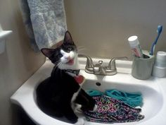 Just washing me undies, nothing to see here...