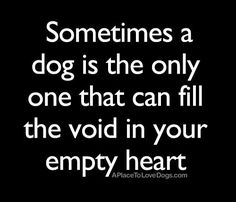 Sometimes a dog is the only one that can fill the void in your empty heart every home • from APlaceToLoveDogs.com • dog dogs puppy puppies cute doggy doggies adorable funny fun cute quotes