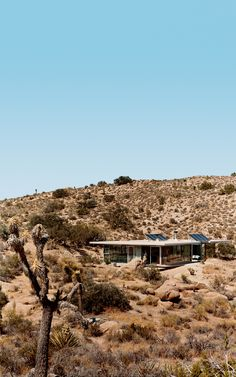 iT House in Joshua Tree, in the California desert, solar panels catch the sun's energy; wide expanses of open doors and windows provide cross-ventilation; and strategic overhangs shade against the desert's endless heat. Photo by Gregg Segal.