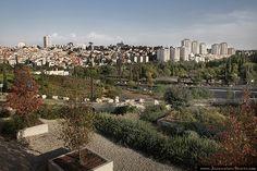 Autumn Jerusalem