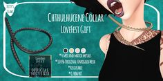 Festival 2017, Great Barrier Reef, Claws, Kitty, Blog, Cuddle Cat, Kitten, Cat, Kittens