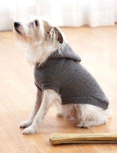 FREE - Hoodie Dog Coat Small-X-LG - Patterns   Yarnspirations