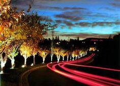 Hampton Inn Spokane Hotel #HHWeekend
