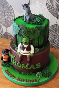 2 Tier Shrek Cake #Provestra #Skinception #coupon code nicesup123 gets 25% off