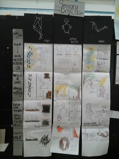 Display sensory catalog