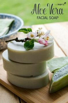 Learn how to make aloe vera soap with fresh aloe; also includes a cold process recipe for aloe vera facial soap bars. face How to Make Aloe Vera Soap Soap Making Recipes, Homemade Soap Recipes, Homemade Soap Bars, Homemade Shampoo, Diy Organic Soap Bars, Diy Soap Bar Recipe, Castile Soap Recipes, Diy Cosmetic, Aloe Vera Facial