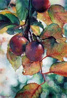 plant patterns in nature plant patterns mary gibbs Watercolor Fruit, Fruit Painting, Watercolor Artists, Watercolor Landscape, Watercolor And Ink, Watercolor Flowers, Watercolour Paintings, Watercolor Pictures, Guache