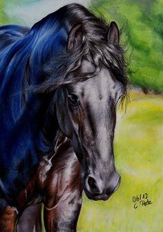 Horse / galliot: Friesian Horse III by *ManiaAdun