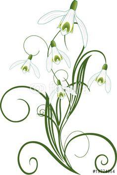 Vector: Schneeglöckchen, Frühling, floral, ornamental, filigran
